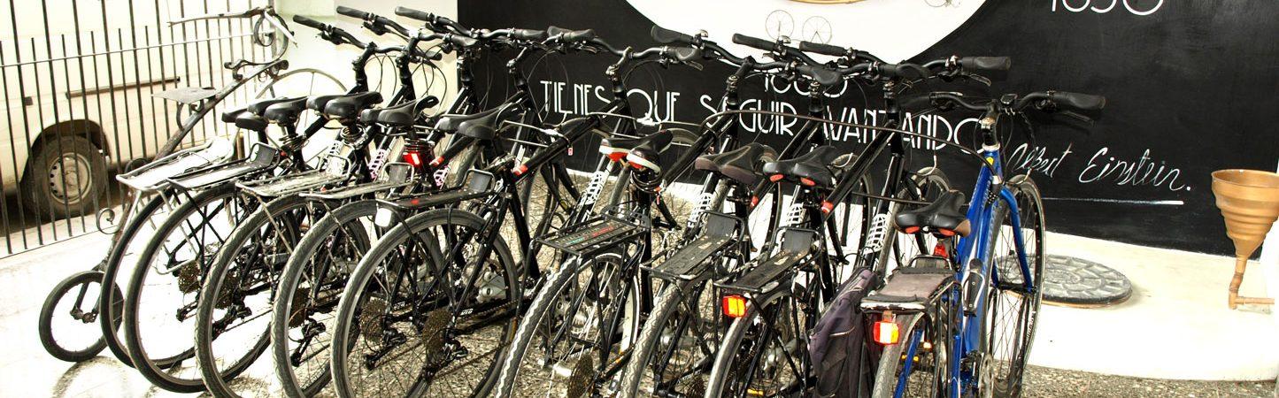 Vélos hybrides et de route